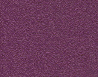 Purple - scanmobile